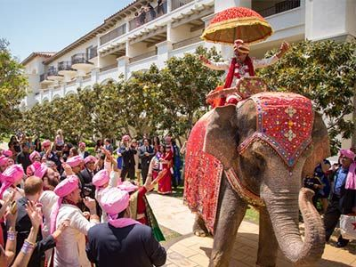 best marriage garden in bhopal utsav marriage garden